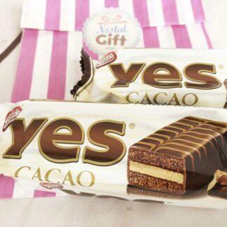 Gâteau chocolat Yes x2