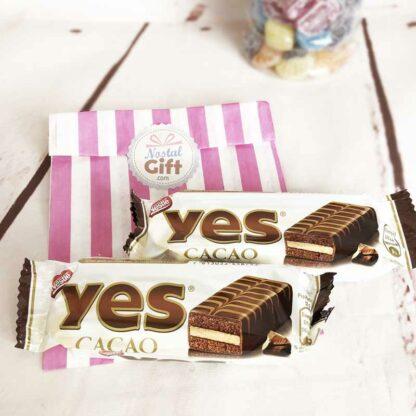Gâteau chocolat Yes de Nestlé x2