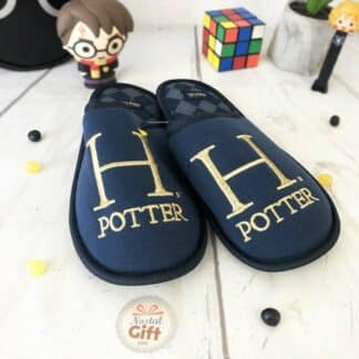 Harry Potter - Chaussons Bleus