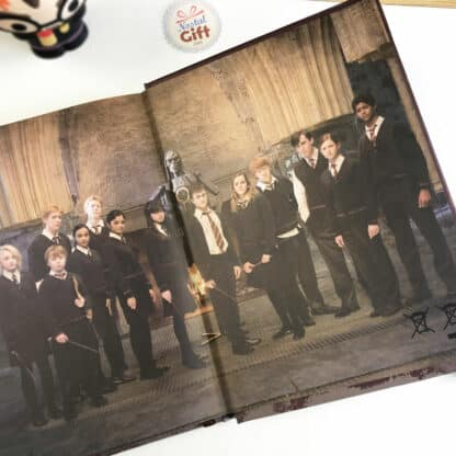 Carnet Harry Potter Lumineux - Dumbledore
