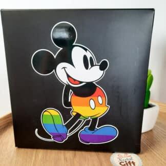 Coffret cadeau - 3 paires de chaussettes arc-en-ciel en coton Disney Pride