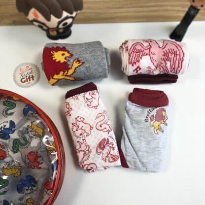 Harry Potter - Pack sous-vêtements : 2 Culottes et 2 paires de chaussettes