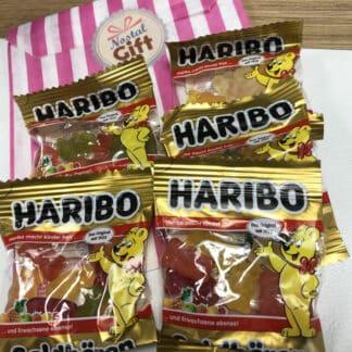 Mini sachets L'ourson d'or Haribo 10g x 5