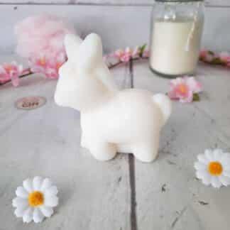 Savon âne au lait d'ânesse bio (145 g)